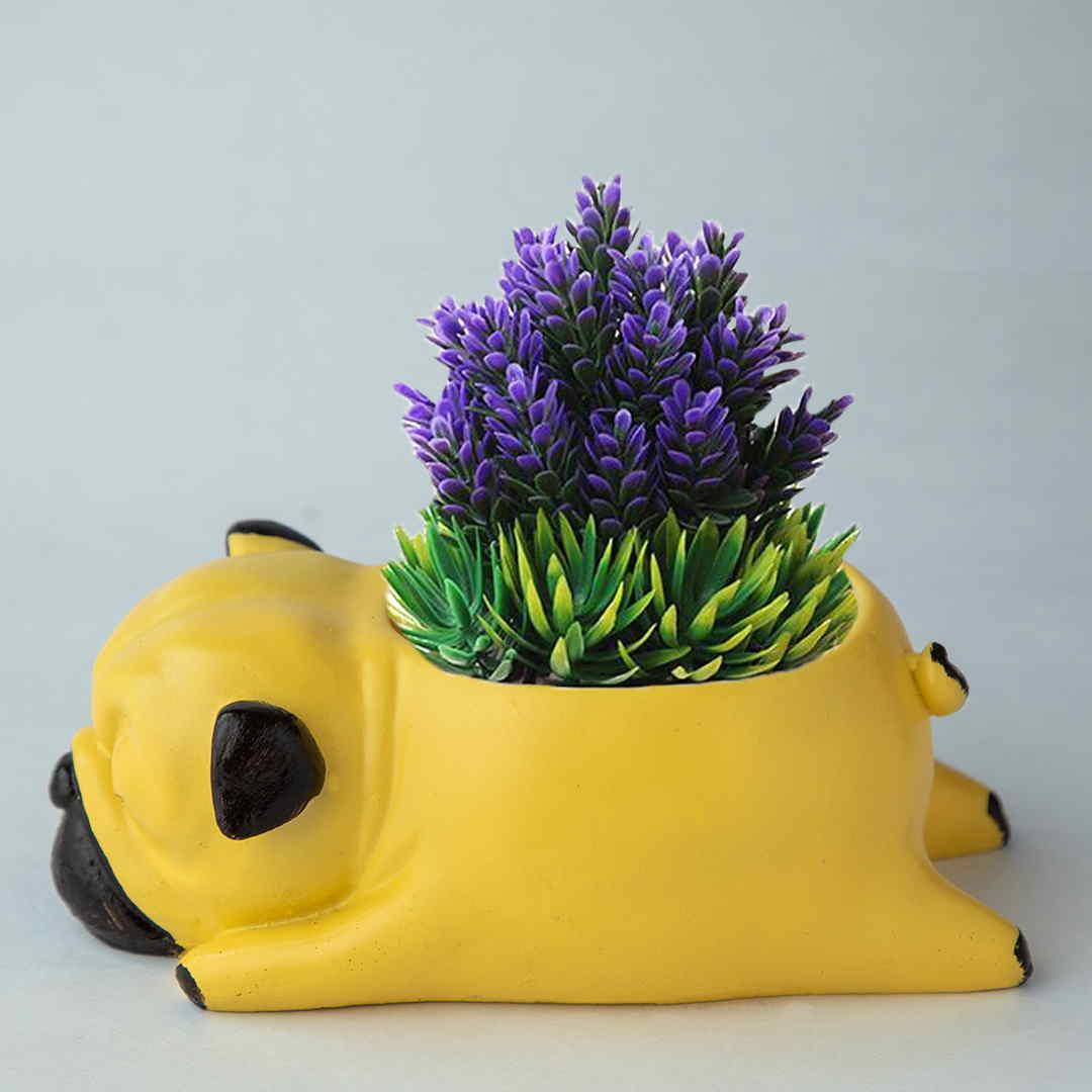 Succulent Pot Pug